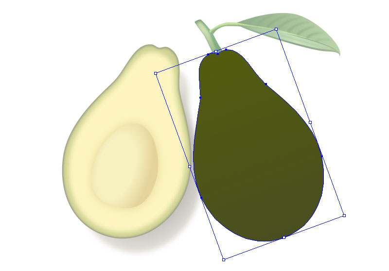 Create Two Slices of Avocado in Adobe Illustrator 2