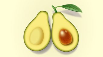 How to Create Two Slices of Avocado in Adobe Illustrator