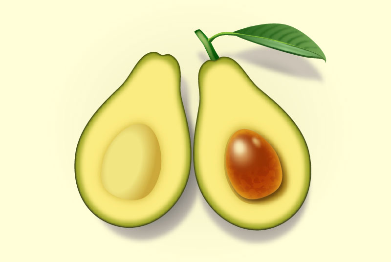 Create Two Slices of Avocado in Adobe Illustrator
